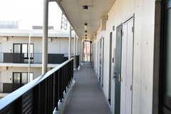 廊下の様子。(2020-02-02,共用部,OTHER,4F)