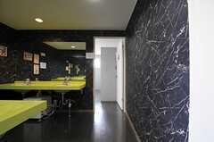 洗面室の様子。(2013-04-18,共用部,OTHER,5F)