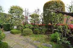 庭の様子。(2015-04-16,共用部,OTHER,1F)