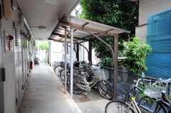 自転車置場の様子。 (2010-06-11,共用部,GARAGE,1F)