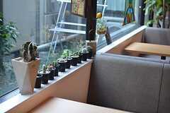 鉢植えが並びます。(2015-10-13,共用部,LIVINGROOM,1F)