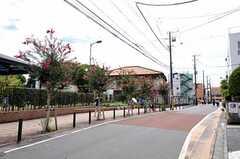JR埼京線・戸田公園駅からシェアハウスへ向かう道の様子。(2012-09-19,共用部,ENVIRONMENT,1F)