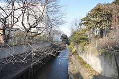 シェアハウスから各線・成増駅へ向かう道の様子。(2009-02-12,共用部,ENVIRONMENT,1F)