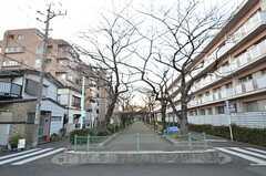 家から駅までは緑道。良い散歩コースです。(2015-01-08,共用部,ENVIRONMENT,1F)