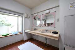 脱衣室に設置された洗面台。(2018-04-13,共用部,WASHSTAND,1F)