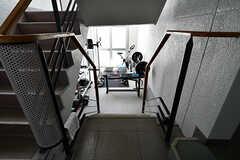 階段をすこし下ると、トレーニングスペースがあります。(2018-04-13,共用部,OTHER,1F)