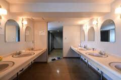 洗面台の様子。奥がトイレです。(2018-04-13,共用部,WASHSTAND,2F)