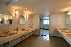 洗面台の様子。奥がトイレです。(2018-04-13,共用部,WASHSTAND,3F)