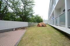 庭の様子。(2015-06-02,共用部,OTHER,1F)