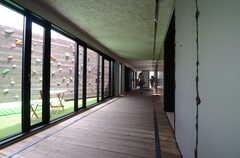 廊下の様子。左手に見えるのはボルダリングスペース。(2015-06-02,共用部,OTHER,1F)