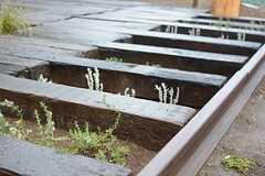 ハーブなどが植えられた菜園スペースがあります。(2016-02-29,共用部,OTHER,1F)