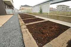 区画整理された菜園もあります。※利用は別途料金が必要です。(2014-03-27,共用部,OTHER,1F)