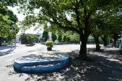 近くにある公園の様子。(2021-07-19,共用部,ENVIRONMENT,1F)