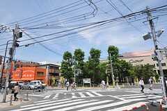 シェアハウスから東武伊勢崎線・梅島駅へ向かう道の様子。(2012-06-08,共用部,ENVIRONMENT,1F)