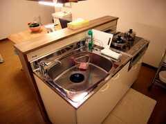カウンター型になっているキッチンの様子。これはかなり楽しそう。(2007-03-01,共用部,KITCHEN,1F)