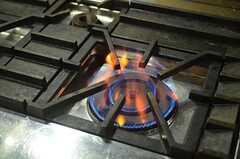 火力も強いです。かなり。(2013-03-27,共用部,KITCHEN,1F)