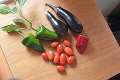 採れた野菜は入居者さんで分けて食べられるそう。(2016-10-20,共用部,OTHER,1F)
