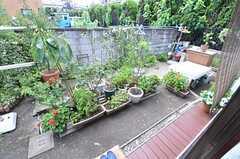 部屋から見た庭の様子。オーナーさんがこまめに手入れをしています。(102号室)(2014-08-11,専有部,ROOM,1F)