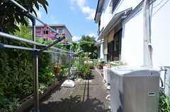 庭の様子。洗濯機が設置されています。(2014-08-11,共用部,OTHER,1F)