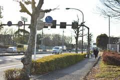 日暮里舎人ライナー・舎人公園駅周辺の様子。(2018-02-19,共用部,ENVIRONMENT,3F)