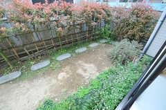 庭の様子。(101号室)(2012-05-14,専有部,ROOM,1F)