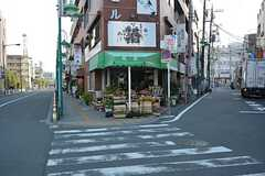 東武伊勢崎線・竹ノ塚駅周辺の様子。(2016-04-12,共用部,ENVIRONMENT,1F)