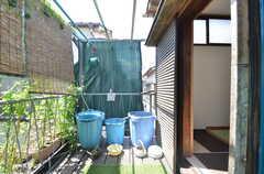 玄関前は植物が植えられています。(2014-08-19,共用部,OTHER,2F)
