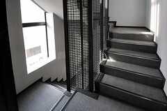 階段の様子。(2011-08-30,共用部,OTHER,2F)