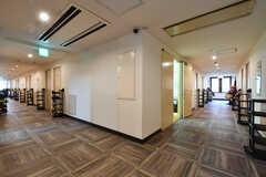廊下の様子。(2020-02-04,共用部,OTHER,2F)