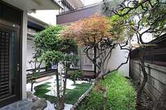 庭の様子。(2013-06-24,周辺環境,ENTRANCE,1F)