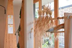 入居者さんが畑で育てた麦。これから麦茶を作る予定だそう。(2017-06-12,共用部,LIVINGROOM,1F)