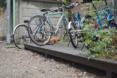 周辺には猫がたくさんいるそう。自転車の間で昼寝をしていたり。(2015-08-31,共用部,OTHER,1F)