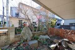 庭の様子。(2009-03-02,共用部,OTHER,1F)