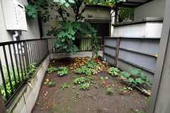 裏庭があります。(2010-10-28,共用部,OTHER,1F)