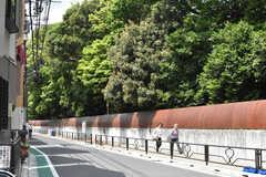 小石川植物園の塀の様子。(2019-05-17,共用部,ENVIRONMENT,1F)