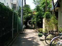 シェアハウスへと向かう小道の様子。(2005-06-06,共用部,ENVIRONMENT,)
