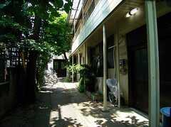シェアハウス外観。(2005-06-06,共用部,OUTLOOK,)