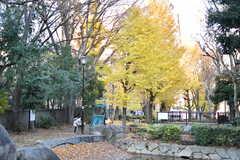 シェアハウスから東京メトロ丸ノ内線・茗荷谷駅へ向かう途中の公園の様子。(2019-12-12,共用部,ENVIRONMENT,1F)