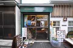 美術館の正面玄関。(2009-11-12,周辺環境,ENTRANCE,1F)