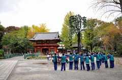 根津神社の様子2。(2009-11-12,共用部,ENVIRONMENT,1F)