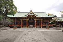 根津神社の様子3。(2009-11-12,共用部,ENVIRONMENT,1F)
