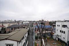 屋上からの景色。周辺は落ち着いた住宅街です。(2009-02-11,専有部,ROOM,2F)