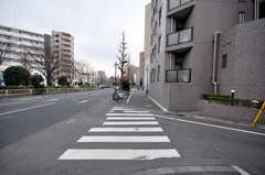 都営三田線・千石駅からシェアハウスへ向かう道の様子。(2009-02-11,専有部,ROOM,2F)