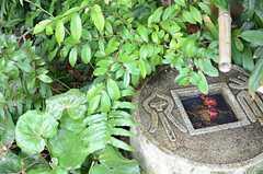 アプローチは庭園のようなつくり。(2013-03-28,共用部,OTHER,1F)