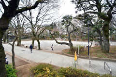 近くの公園の様子。(2018-03-19,共用部,ENVIRONMENT,1F)