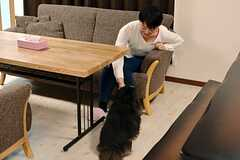 リビングで過ごす入居者さんと愛犬の様子。リビングに連れてくると走りまわって喜ぶそう。(2016-01-12,共用部,LIVINGROOM,1F)