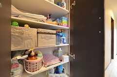 洗剤などを収納しておける棚の様子。(2016-01-12,共用部,OTHER,2F)