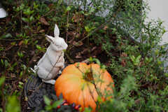運営事業者さんの社名にも入っているウサギ(lapin)がいろいろな場所にいます。(2017-10-17,共用部,OTHER,1F)