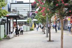 京王線・仙川駅周辺の様子2。(2018-07-13,共用部,ENVIRONMENT,1F)