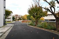 アプローチの様子。敷地内に大学寮とシェアハウスが建てられています。大学寮の入居者さんがシェアハウスの一部を利用するとのこと。(2017-11-10,共用部,OUTLOOK,1F)